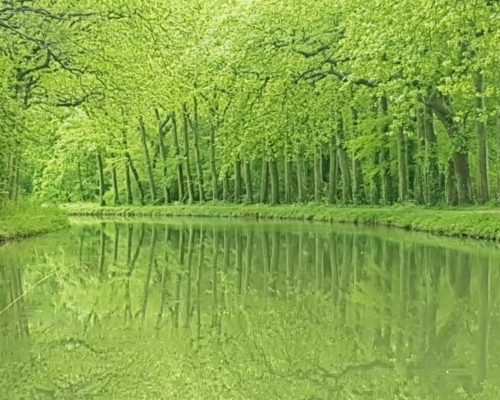 Canal Camille